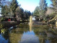 Lago en Casa de Cultura, Acambay_1024x768