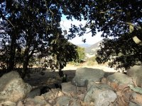 Mi patio trasero, en Zona Arqueologica, Huamango_1024x768
