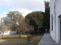 Santuario Sr De Nenthe_4