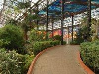Cosmo Vitral Jardin Botanico_24
