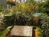 Cosmo Vitral Jardin Botanico_25