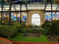 Cosmo Vitral Jardin Botanico_29