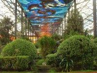 Cosmo Vitral Jardin Botanico_30