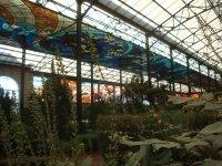 Cosmo Vitral Jardin Botanico_8