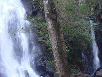 Cascada Velo de Novia_18