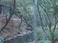 Cascada Velo de Novia_5