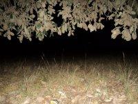Oscuridad en Huamango al acampar_1024x768