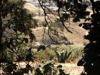 Vista en acampamiento, Zona Arqueologica Huamango_1024x768