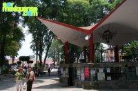 Mercado / Jardin Principal