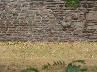 Zona Arqueologica El Conde_13