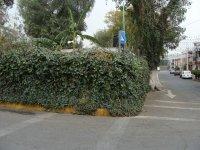 Zona Arqueologica El Conde_18