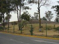 Zona Arqueologica El Conde_7