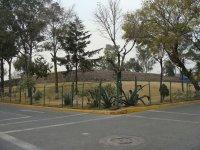 Zona Arqueologica El Conde_8
