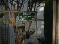 Calzada de Los Jinetes, Arboledas