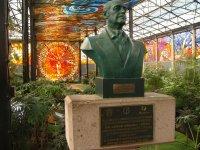 Cosmo Vitral Jardin Botanico_15