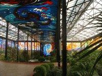 Cosmo Vitral Jardin Botanico_16