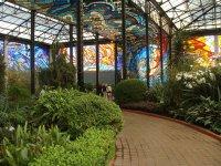 Cosmo Vitral Jardin Botanico - Toluca