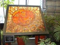 Cosmo Vitral Jardin Botanico_28