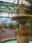 Cosmo Vitral Jardin Botanico_5