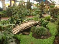 Cosmo Vitral Jardin Botanico_7