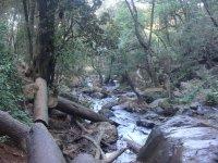 Cascada Velo de Novia_21