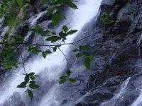 Cascada Velo de Novia_24